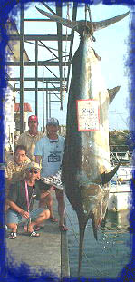 843 lb. Black marlin and the biggest black so far this century