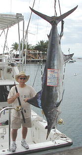 biggest striped marlin