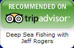 Deep Sea Fishing with Capt. Jeff Rogers